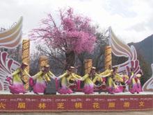 到雅鲁藏布大峡谷赏中国最美桃花