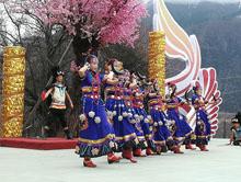 人间净地 醉美林芝  十六届林芝桃花旅游文化节